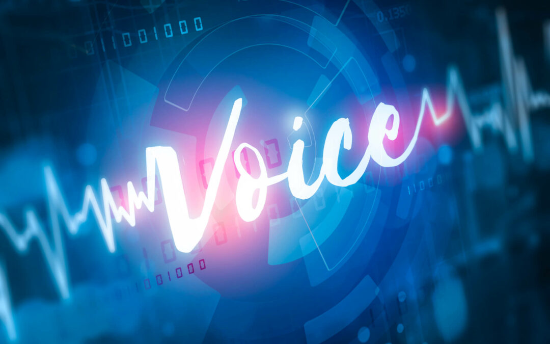 What Communications Service Providers Should Know About Attacks on Voice Networks